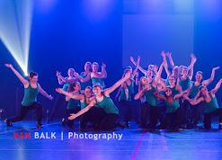 Han Balk Voorster Dansdag 2016-4624.jpg