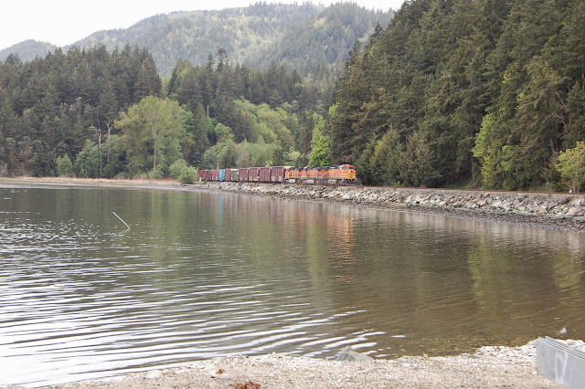 The train passing through at Taylor Shellfish Farm.Credit: Bellingham Whatcom County Tourism