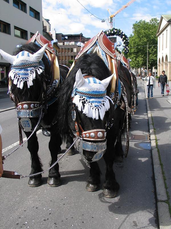 KORNMESSER GARTENERÖFFNUNG MIT AUGUSTINER 2009 056.JPG