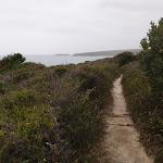 Track along the hillside (107824)