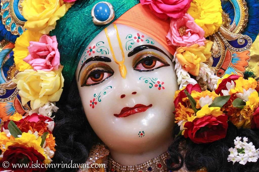 ISKCON Vrindavan Sringar Deity Darshan 03 Feb 2016 (5)