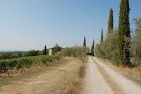 Carraretto_Castellina in Chianti_6