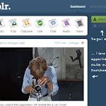 tumblr001.jpg