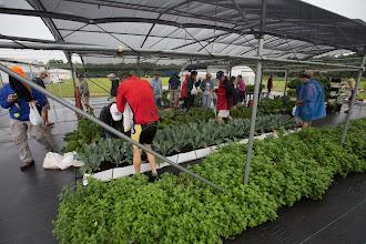 Photo: back at US hydroponics