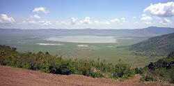 Cratère du Ngorongoro 23km de diamètre et 600m de profondeur!