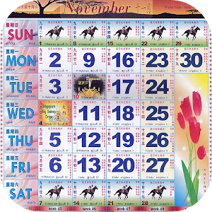 January Casino Race 2018 - Mobil6000