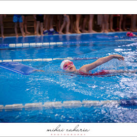 20161217-Little-Swimmers-IV-concurs-0104