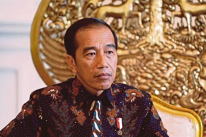 Jokowi: Indonesia adalah Bangsa Petarung, Insyaallah Bisa Menghadapi Corona