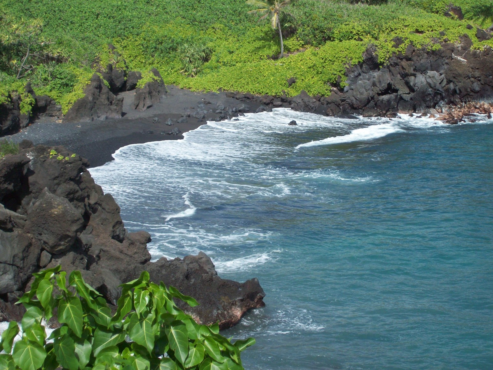 Hawaii Day 5 - 114_1560.JPG