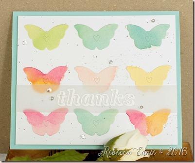 wtcl butterflies