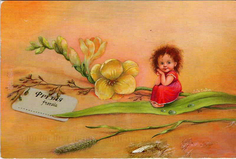 Студия открыток лида