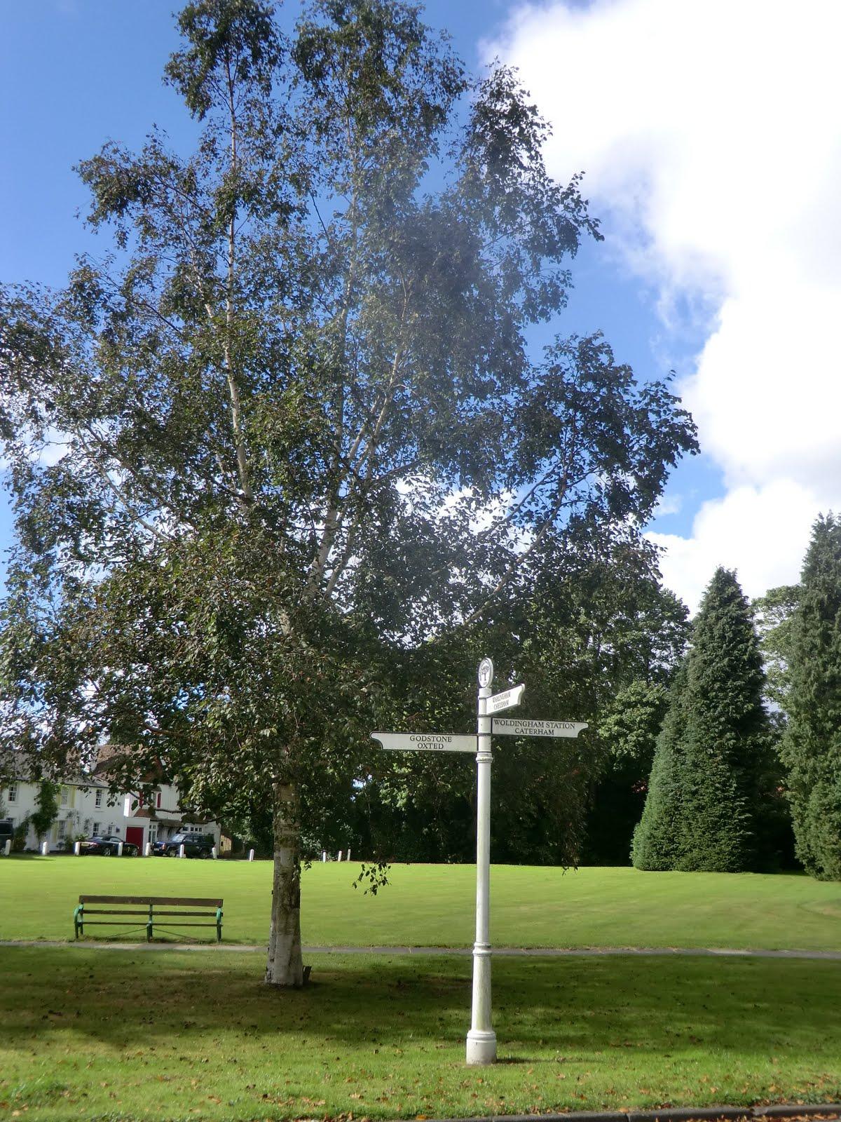 CIMG4104 Woldingham Green