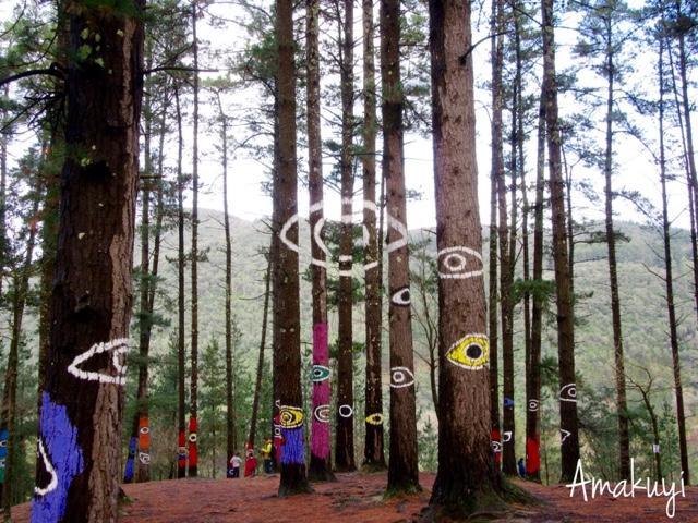 Euskadi-excursiones-con-niños-bosque-animado