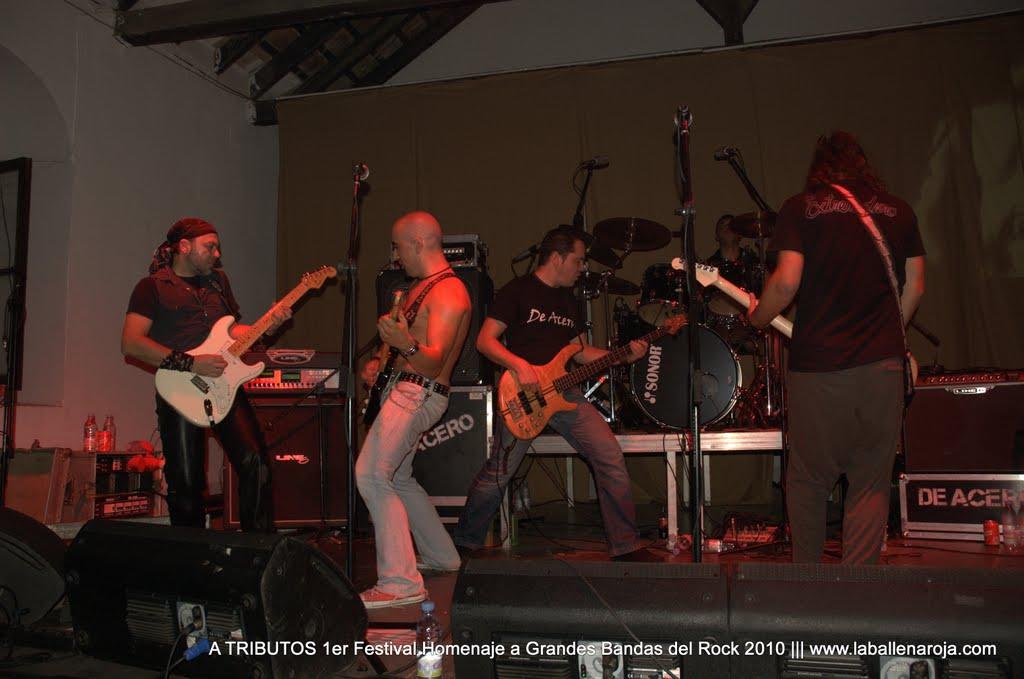 A TRIBUTOS 1er Festival Homenaje a Grandes Bandas del Rock 2010 - DSC_0175.jpg