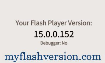 myflashversion.com