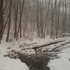 Зимний Вантит 123.jpg