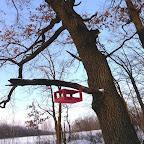 Кормушки для птичек 053.jpg