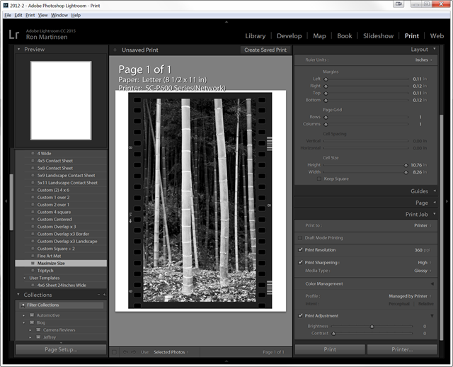 Lightroom 2015 with Advanced Black and White on Metallic