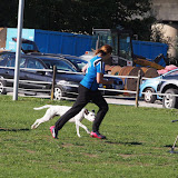 Finale des 3-Städte-Cup`s bei den Hundefreunden Eltmann am 26./27.09.2015 - 2.Platz!!! für den BPSV Hof - P9270689%2B%2528Gro%25C3%259F%2529.JPG