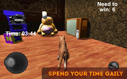 Catty Cat Simulator