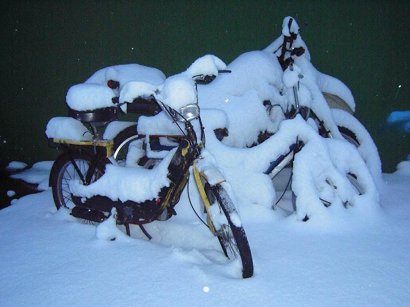 con la neve tutto diventa arte di lando