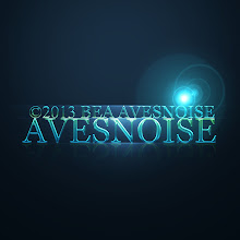 Photo: Avesnoise
