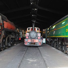 Bluebell Engine Sheds by DJ Cockburn - Transportation Trains ( railroad, standard 9f class, west country class 4-6-2, british railways, bluebell railway, no 21c123, br, steam locomotive, southern railway, no 92240, england, train, tank engine, 2-10-0, dr, west sussex, steam engine, restoration, engine shed, vintage, captain baxter, blackmoor vale, railway, sheffield park station, fletcher jennings & co 0-4-0t, historical, light pacific, antique )
