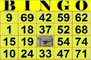 Resultado de imagem para brincadeiras folcloricas bingo