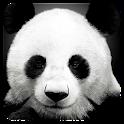 Animal Gallery HD