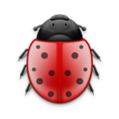 Beetle Bug Tracker