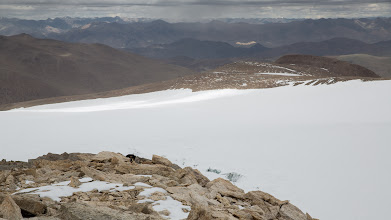Photo: We climbed Lunger Kangri in cloudy conditions with a dog leading the way, literally running circles around us, and here playing hide and seek. The view is towards Hanle.