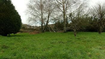 terrain à Montournais (85)
