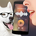 Translator for dogs Simulator icon