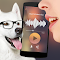 Translator for dogs Simulator 1.1 Apk