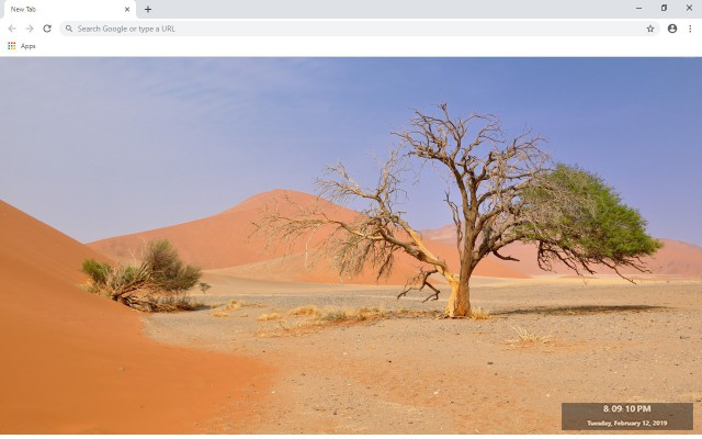 Deadvlei New Tab & Wallpapers Collection
