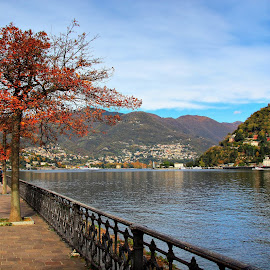 Lago di Como, Italy by Francis Xavier Camilleri - City,  Street & Park  Vistas