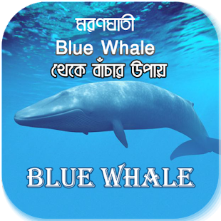 মরণঘাতী Blue Whale থেকে বাঁচার উপায় - náhled
