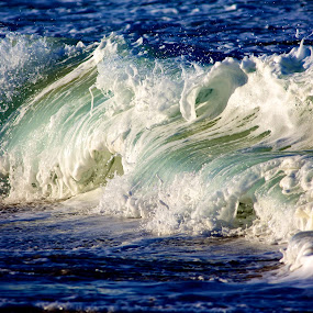 Waves by Julie Steele - Nature Up Close Water ( water, afternoon sun, waves, beach )