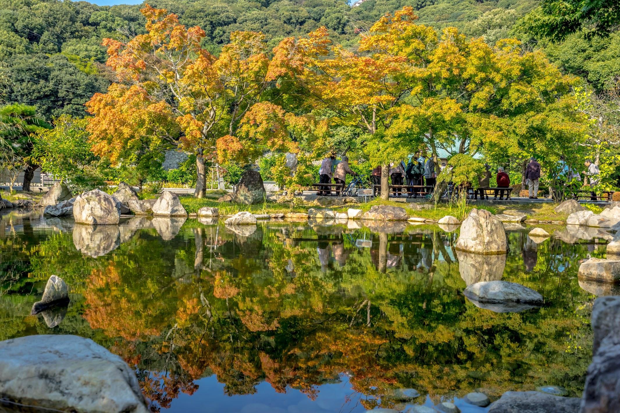 Ninomaru Historical Garden3