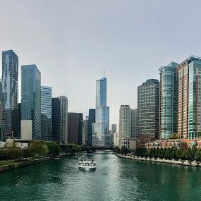 Chicago Skyline by Christopher Kenney - City,  Street & Park  Skylines
