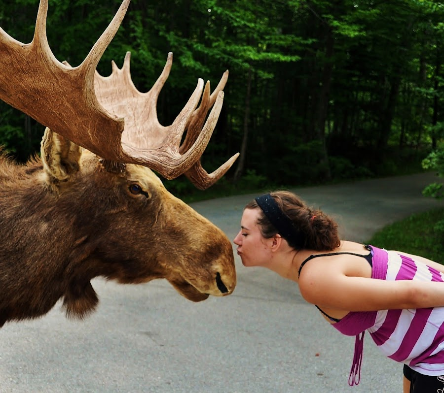 Love Da Moose by Thomas Barr - People Fine Art