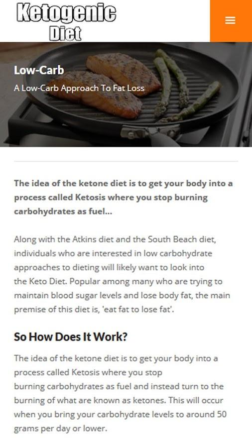 Ketogenic Diet Plan Screenshot