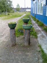 Photo: Koulun sisäänkäynti
