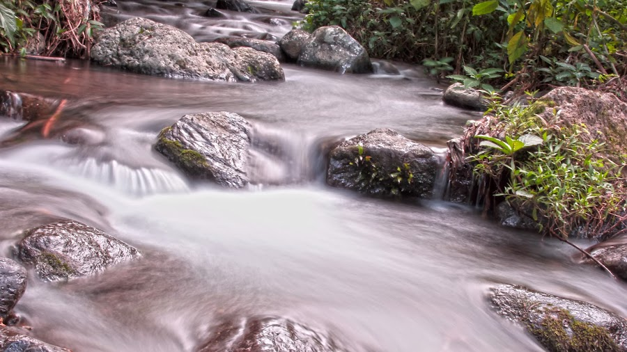 the other side of water by Wibi Prayogo - Landscapes Waterscapes