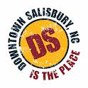 DOWNTOWN SALISBURY icon