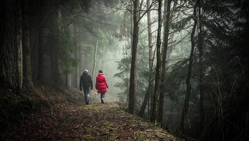 la-plus-beau-voyage-marche-vers-soi