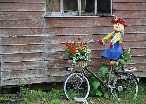 pedalando... pedalando di Dario Marzanni