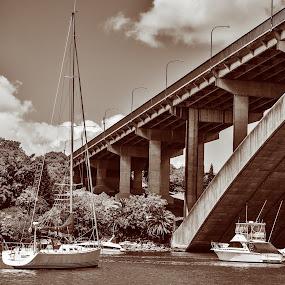 The Bridge by Vesna  Podkrajac - Buildings & Architecture Bridges & Suspended Structures