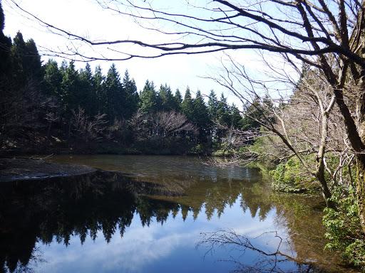 水舟の池1