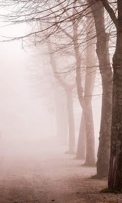 Il profumo della nebbia